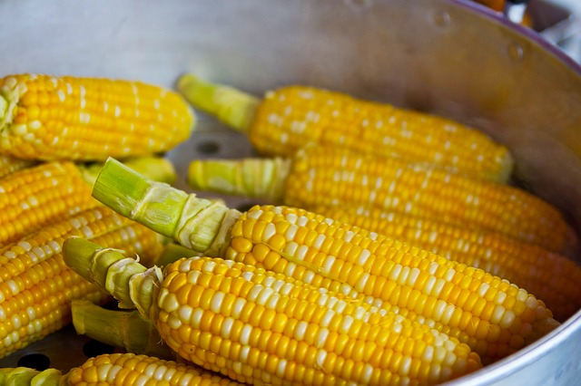 pop-corn-785074_640