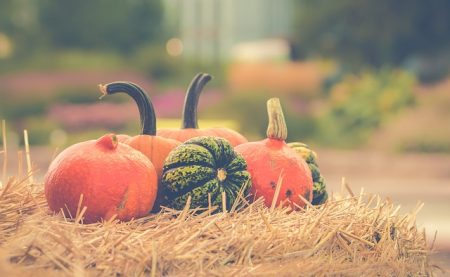 pumpkin-2989569_640