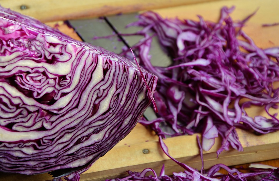 red cabbage 1931731 960 720