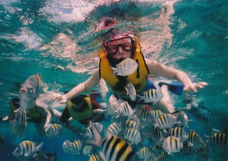 reef-snorkeling-377390_640