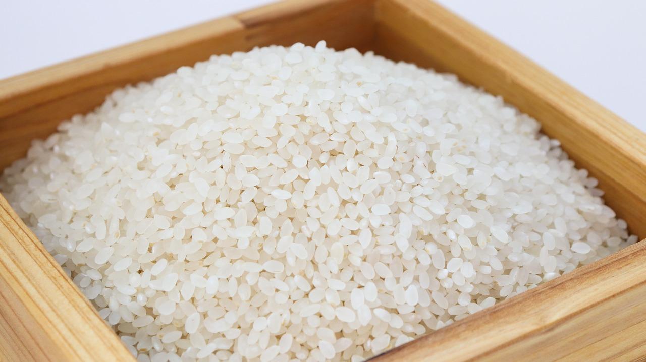 rice 3997767 1280
