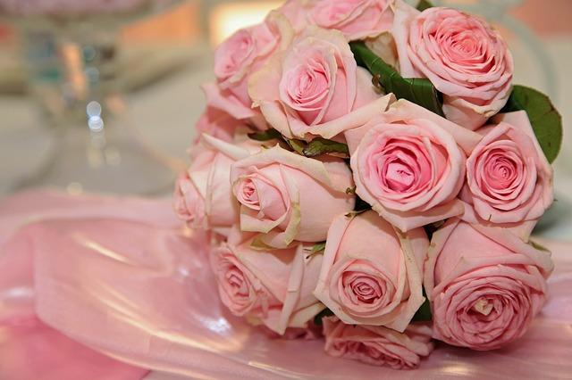 rose-1751742_640