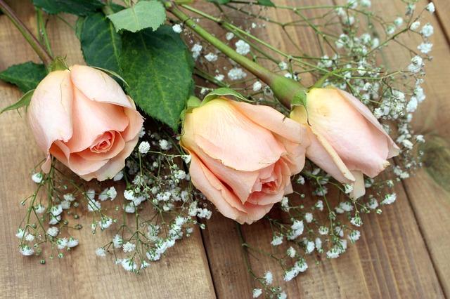 roses-2125787_640