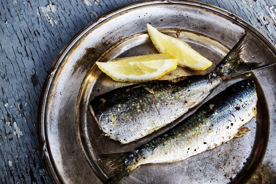 sardines 1489626 960 720