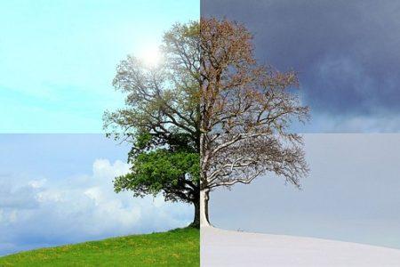 seasons-of-the-year-1127760__340