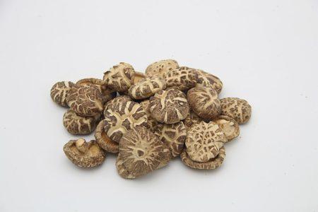 shiitake-mushroom-1473306_640