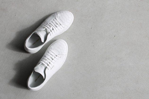 shoes 1592165 960 720