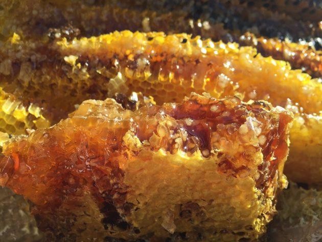 soil honey 1534287 960 720
