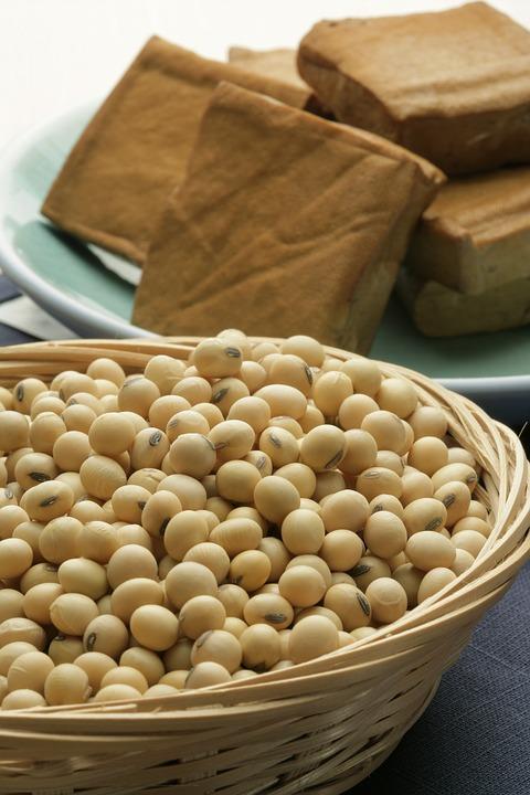 soybean 2760711 960 720