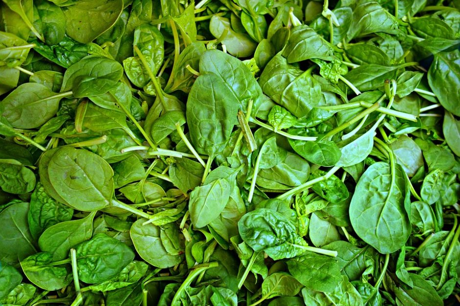 spinach-1522283_960_720