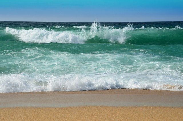 surf 1945572 640