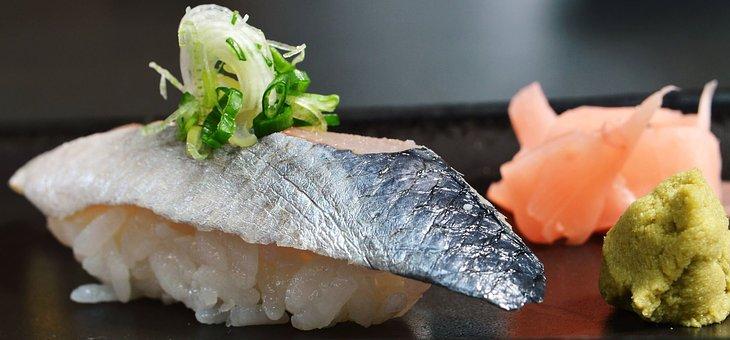 sushi 1996068  340