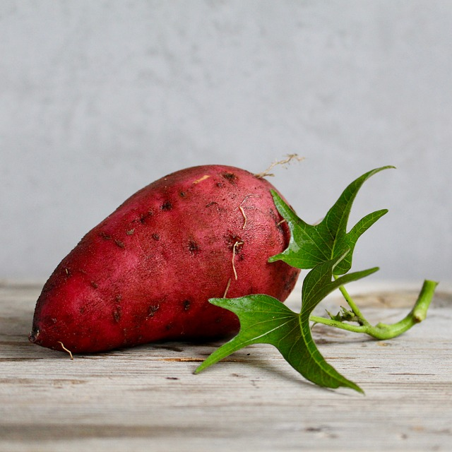 sweet-potato-2086784_640