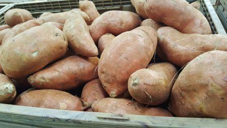 sweet-potatoes-1310287_640
