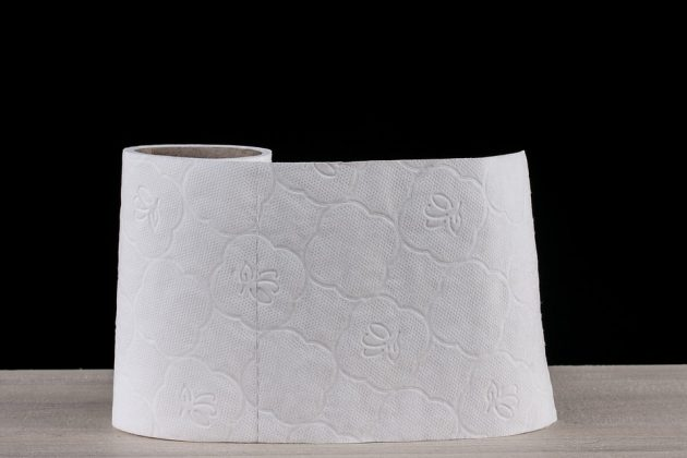 toilet paper 2923445 960 720