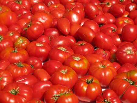 tomatoes-1243132_640