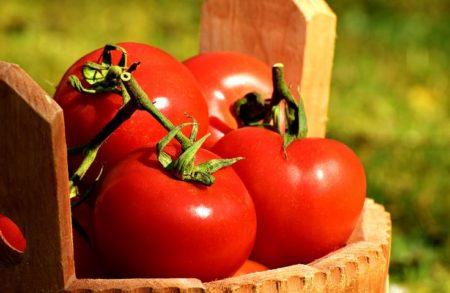 tomatoes-2204853__480
