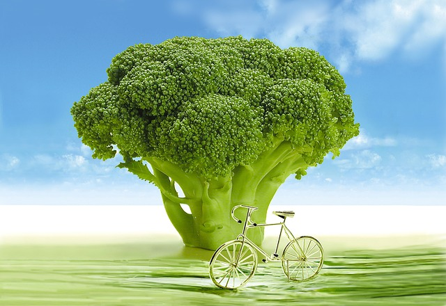 vegetables-694304_640