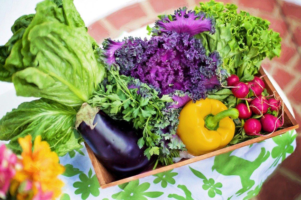vegetables 790022 1280