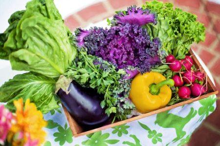 vegetables-790022__340