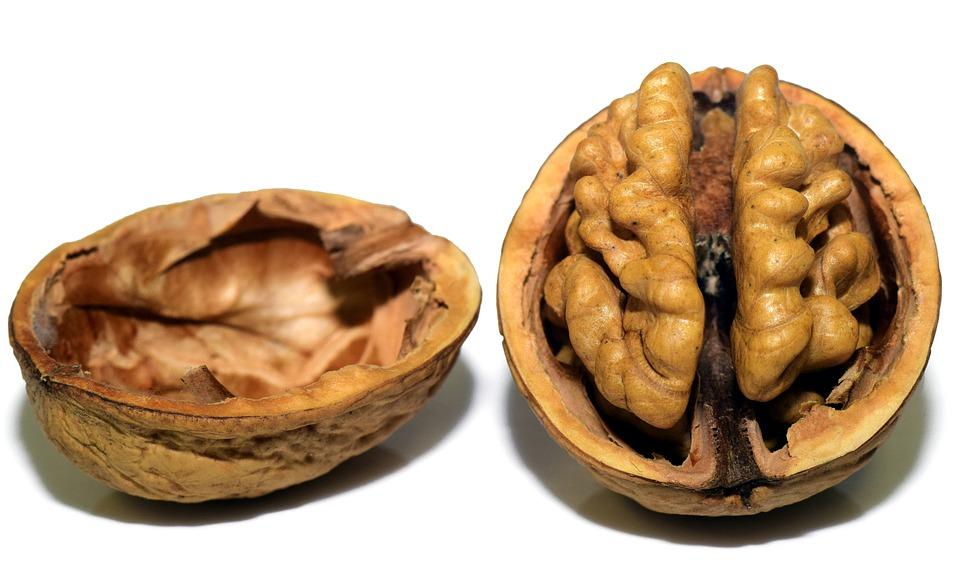 walnut 3072681 960 720