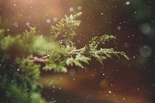winter-1791370__340