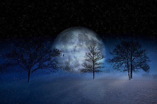 winter-2957050__340
