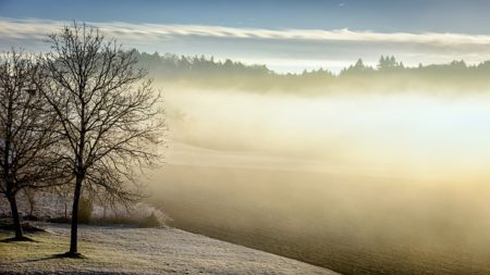 winter-598632_640-1