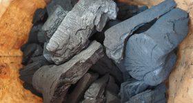 炭の類まれな驚くべき性質。腸閉塞の症状改善・致死量の有害薬剤を炭で排出することに成功した信じ難い事例も。医師も推奨するチャコール療法とその実態について