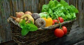野菜ジュースを飲んで1日の栄養が摂れるは嘘! 健康的に見えて実は健康的ではないことをご存知ですか?