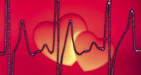 唯一ガンになりにくい臓器「心臓」の秘密|なぜ高い体温が大事なのかお伝えします。