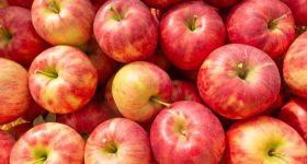 今の時期の感染症1位である胃腸炎。1日1個のりんごで免疫力をアップしウイルスから身を守る。