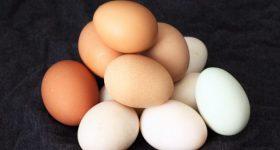 日本に出回る安価な卵の実態。食べる価値の疑われる安価な卵の裏側と、安全な卵の選び方。