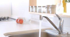水がエネルギーを蓄える?!体内水分の本当の役割を知る専門家が、水の質にこわだわる理由。