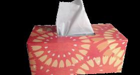 <初心者向け>陰陽五行からみた「鼻水の意味」とは?鼻水で苦しまないために今日からできるたったひとつの習慣。