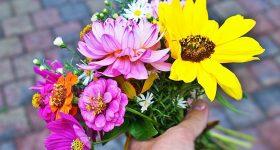 美しい花には危険な農薬が大量に使われている事実|15年以上お花の仕事をした私が初めて知った衝撃の実態