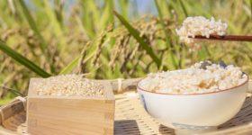 玄米が全ての人にメリットがあるわけではない理由|玄米を取り入れる時に注意したい3つのポイント